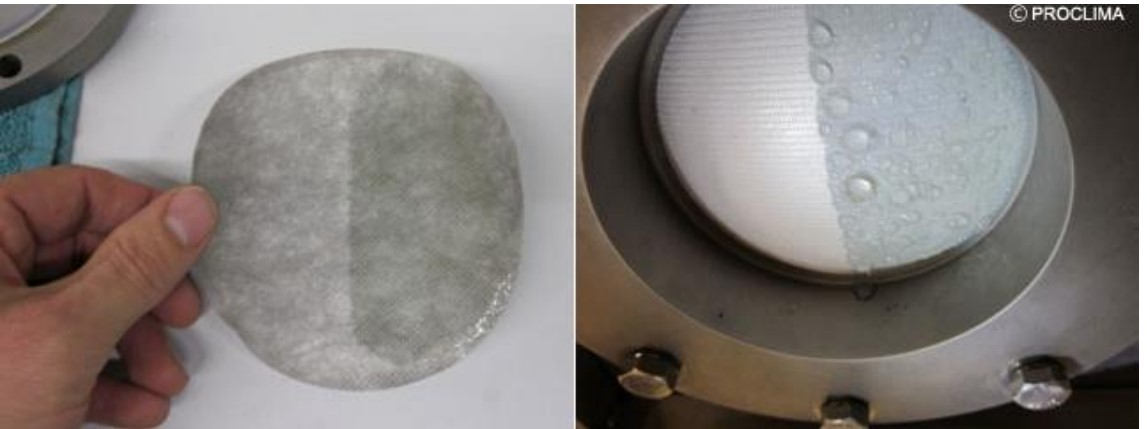 Thermoplastic Elastomer Ether Esters: What are they, how do they work?